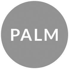 CARL E. PALM